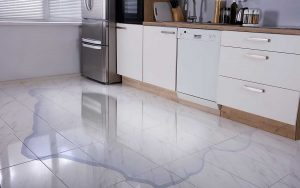 Water damage from appliance in kitchen - Water Damage Prevention Tips for Home Appliances